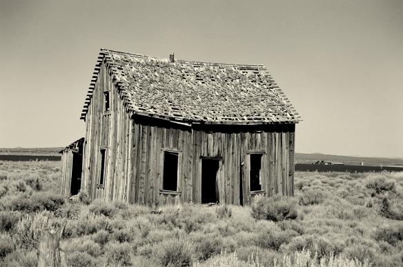 Homestead (Picasa)